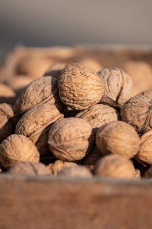 Loose Walnuts